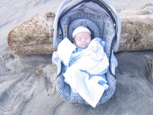 Other_baby_ocean